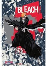 Great Eastern Entertainment Bleach Ichigo Wall Scroll, 33 by 44-Inch - $45.05