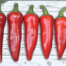 Red Fresno Hot Pepper 30 organic Seeds pepper - $6.00