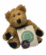 "Boyds Bears Simone Plush Brown Bear Golden Teddy Award Nominee 6"" Jointe... - $14.95"