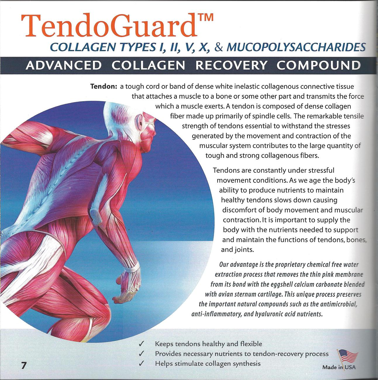 COLLAGEN RECOVERY-COMPOUND COLLAGEN TYPES I,II,V,X.  TENDON *INFLAMMATION*PAIN