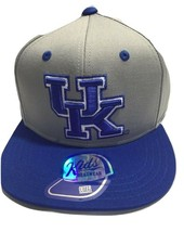 NCAA Kentucky Wildcats Cap, kids Boys, Snapback Hat, Gray, Blue, Flatbrim - $14.54