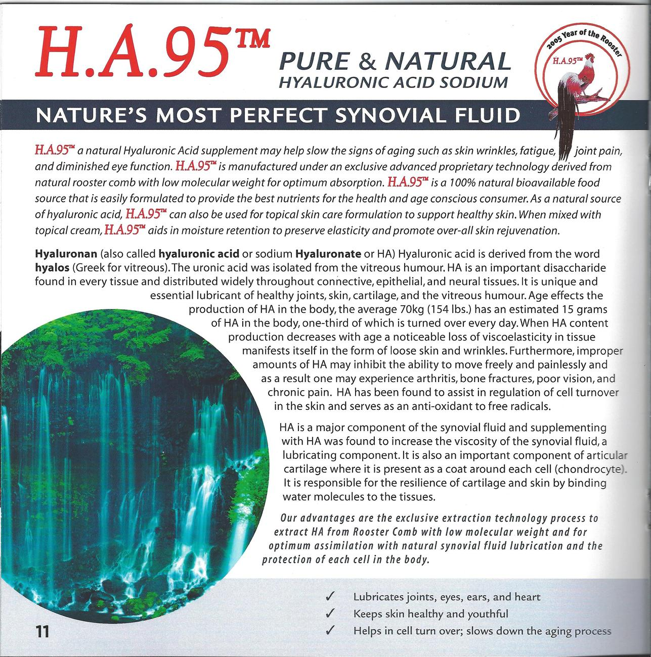 PURE AND NATURAL HYALURONIC ACID LUBRICATES JOINTS, KEEPS SKIN HEALTHY