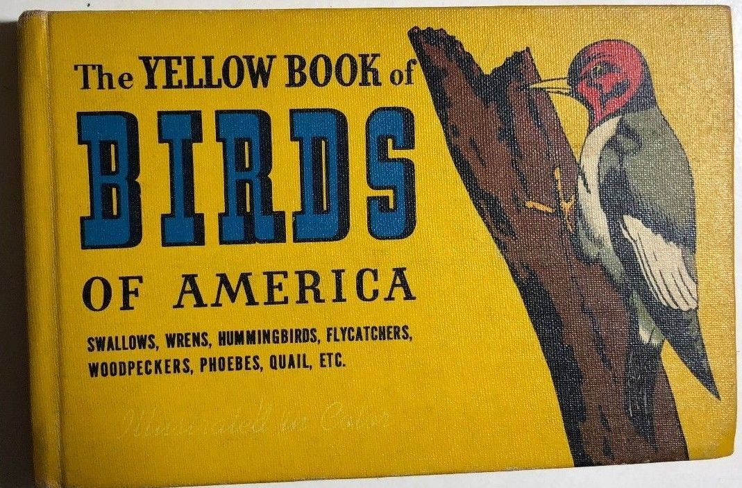 THE YELLOW BOOK OF BIRDS OF AMERICA (1941) Whitman color illustrated HC
