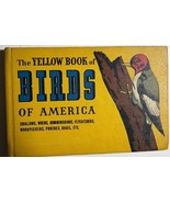 THE YELLOW BOOK OF BIRDS OF AMERICA (1941) Whitman color illustrated HC - $11.87