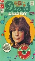 David Cassidy/The Partridge Family Magnet - $7.99