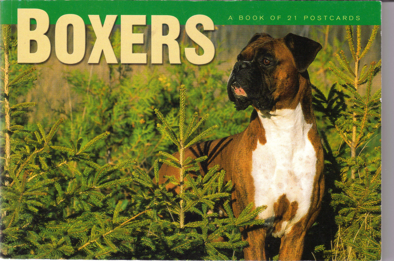 Book of 21 Boxers Postcards