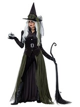 California Costumes Women's Gothic Witch-Adult Costume, Black/Green, Large - $60.60