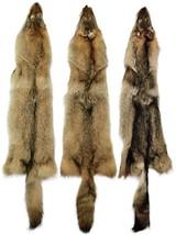 """XL Length 42/"""" AuSable™ Fur Tanned Blue Fox Fur 50/"""" Pelts"""