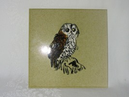 Vtg 60s Owl Ceramic Tile H&R Johnson Cristal Withersdale England Hand De... - $39.59