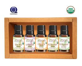 Organic Essential Oil Set, 5 x 10 ML Lavender Tea Tree Rosemary Orange P... - €29,62 EUR