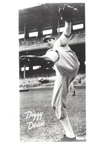 Dizzy D EAN 8X10 Photo St. Louis Cardinals Baseball Picture Large White Border - $3.75
