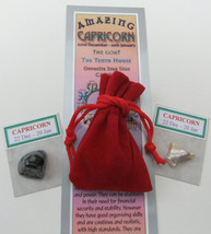 CAPRICORN - Bookmark & Birthstones - plus a Red Velvet pouch and my book... - £3.02 GBP