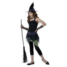 Sassy Witch California Adult Med LG Size 10-14 Halloween Costume New - $24.70