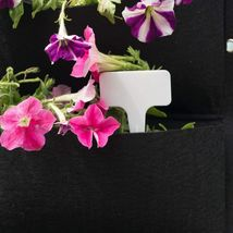 Vertical Garden Hanging Pocket Wall Planters 2 Pack with Bonus Plant Tags image 3