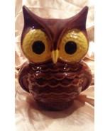 Vintage 1960s HOOT OWL Ceramic BANK - STATUE - $8.90