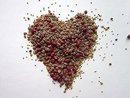 """""""COOL BEANS n SPROUTS"""" Brand, Love your heart Mix seeds for sprouting mi... - $4.21"""
