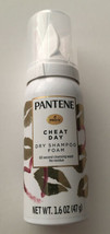 Pantene Pro-V Cheat Day Dry Shampoo Foam 1.6 Oz. Case Of 24 - $98.00