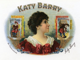 Decor Katy Barry Poster.Wall interior design Home Shop studio Wall Art.2017 - $11.30+