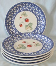 Savoir Vivre Country Delight ML023 Blue Trim Salad Plate set of 5 - $30.58