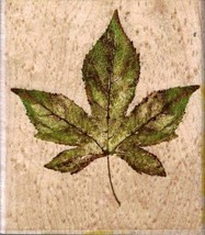 Rubber Stampede A2947H Liquid Amber Maple Tree Leaf Mounted Rubber Stamp - $7.91