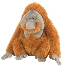 Wild Republic Orangutan Male - Plush Toy 30cm #jgi - ₹1,586.96 INR