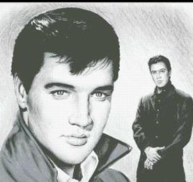 Hollywood Greats Elvis Presley Roustabout cross stitch chart Mystic Stitch