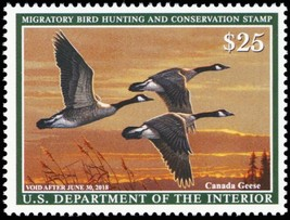 RW84, Mint NH 2018 Canada Geese Federal Duck Stamp - Stuart Katz - $39.95