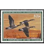RW84, Mint NH 2018 Canada Geese Federal Duck Stamp - Stuart Katz - $39.95