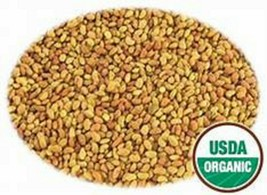 Organic Alfalfa Seeds for Sprouting  -  100+ Seeds - Non-GMO image 1