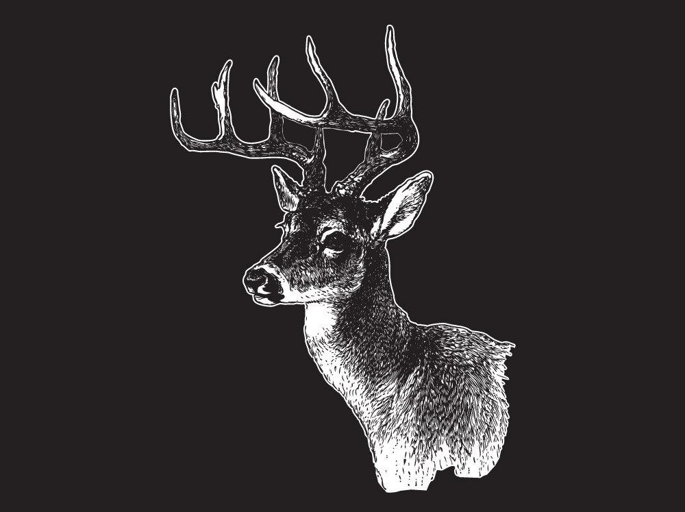 Detailed Deer Vinyl Laptop Art