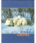 Wild Babies-Nan Richardson-36 SPECIES-MAMMALS,BIRDS,AMPHIBIANS-COLOR-200... - $14.99