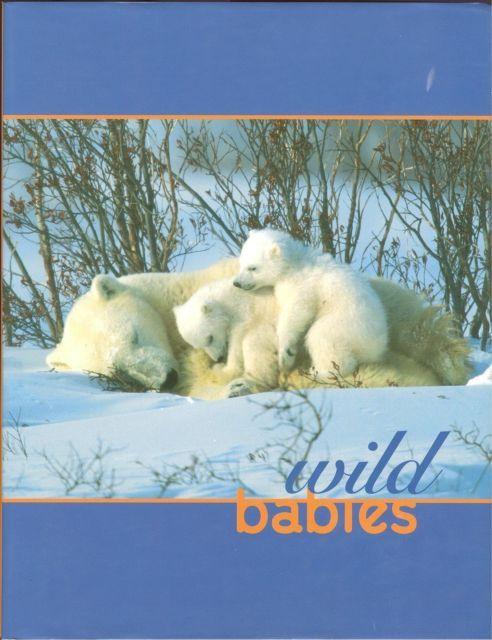 Wild Babies-Nan Richardson-36 SPECIES-MAMMALS,BIRDS,AMPHIBIANS-COLOR-2006;HCDJ