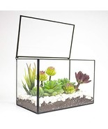 Ferrisland Rectangle Geometric Desk Clear Glass Terrarium Box w/Lid Tabletop Suc - $30.54