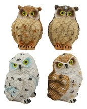 Whimsical Forest Peeking Colorful Fat Owls Miniature Figurine Set of 4 O... - $15.99
