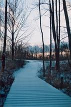 """""""A Frosted Path"""" - Color Film Print - Winter Landscape Photography - $29.99"""