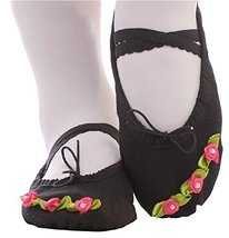 Dance Class Ballet Shoes/Canvas Dance Shoes for Pretty Girl (21CM Length)-Black