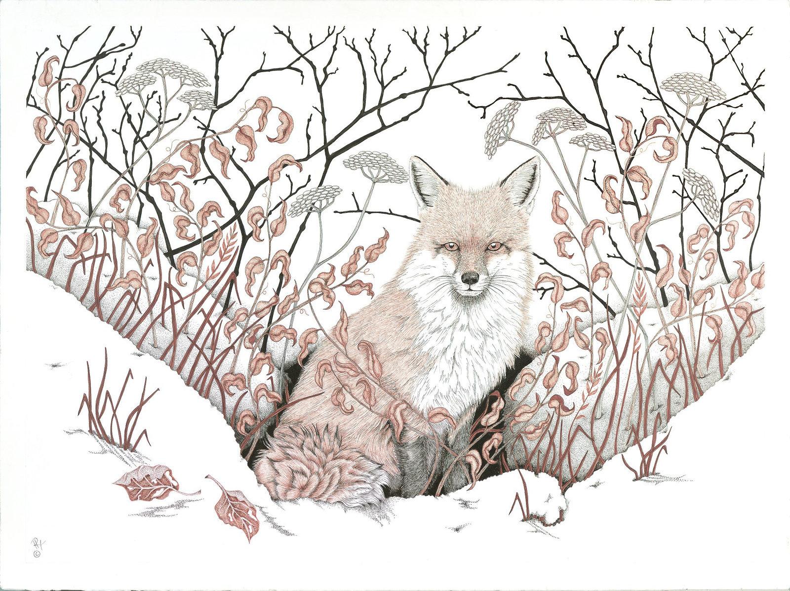 Fox, First Snow, Framed Wildlife Art Print, Pen and Ink, Animal Art Print, Matte
