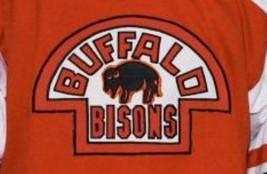 Custom Name # Buffalo Bisons Retro Hockey Jersey New Orange Any Size image 4