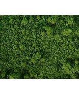 CHROMIUM GREEN IRON OXIDE PIGMENT Soap Colorant NATURAL - $4.90
