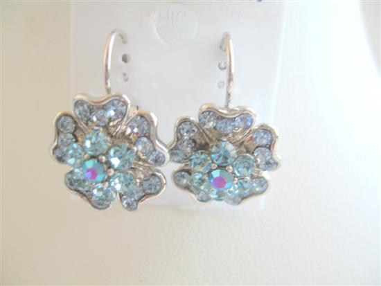 Primary image for Elegant Aquamarine Crystals Spreal In Flower Pierced Earrings