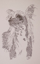 CHINESE CRESTED Dog Art Portrait Print #31 Kline adds dog name free WORD... - $49.95