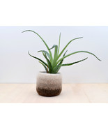 Felt succulent vase / Earth / felted planter / cactus vase / Ombre brown... - €21,00 EUR