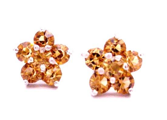 Charitable Jewelry Return Gift Lite Colorado Flower Stud Earrings
