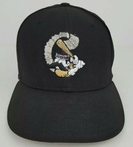 Williamsport Crosscutters NewEra Throwback Adult Size 6 3/4 Fitted Baseball Hat - £30.02 GBP