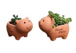 Set of 2 Cute Animal Clay Planters Mini Flower Pots, Cat & Bear - $26.17