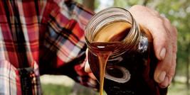 45 Honey Drip Sorghum Seeds-1346 - $3.98