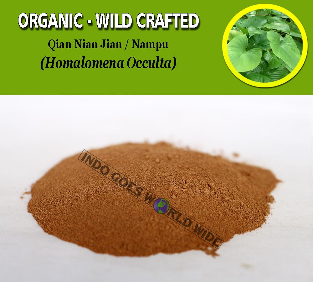 POWDER Qian Nian Jian Nampu Homalomena Occulta Organic Wild Crafted Herbs