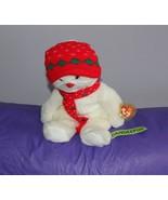 """Ty Beanie Buddie Buddy Snowboy 14"""" Stuffed Animal Plush 1999 - $16.82"""