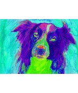 Border Collie Art Print, Collie Doig Wall Art Decor, Colorful Abstract P... - $406,17 MXN