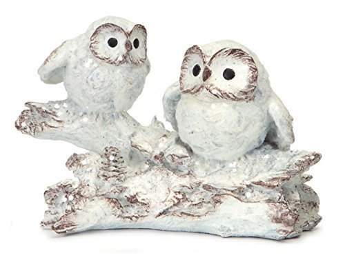 Two White Owls on Branch